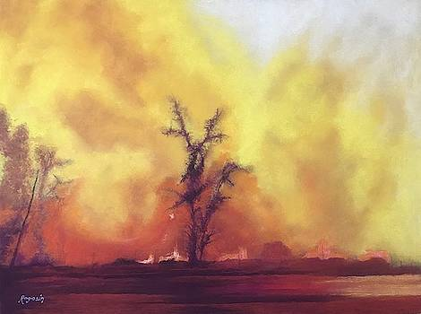Fire by Harvey Rogosin