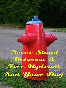 Fire Hydrant Advice by Kathy K McClellan