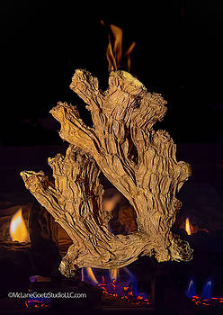 Fire Roasted Ginger by LeeAnn McLaneGoetz McLaneGoetzStudioLLCcom