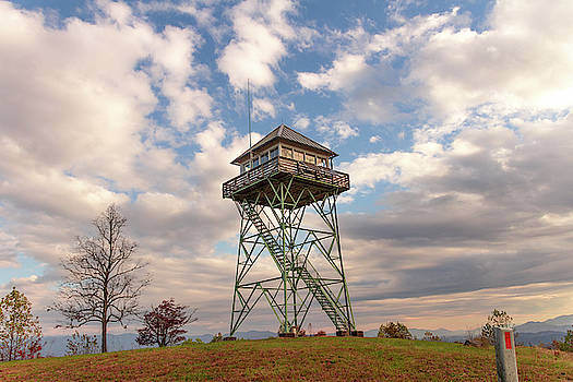 Fire Tower- Panther Top by Kelly Kennon