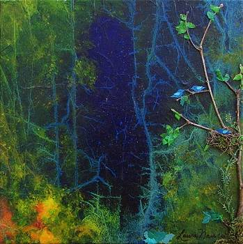 Fireflies and Nightbirds by Laura Nance