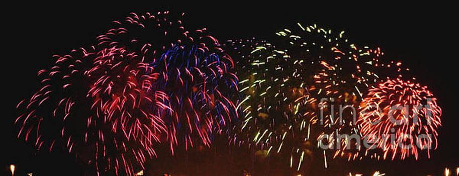 Fireworks II by Cassandra Buckley