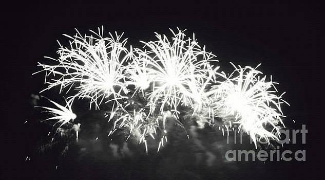 fireworks III by Cassandra Buckley