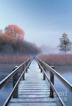 First light, November by Colin Roberts