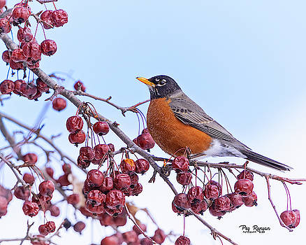 First Sign of Spring by Peg Runyan