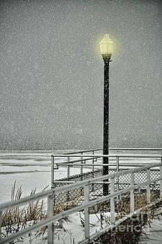 First Snow by Diane LaPreta