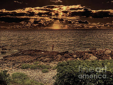 Fisherman on the rocks by Leigh Kemp