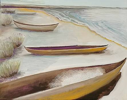 Fishing boats along the shore by Lilly Ramphal