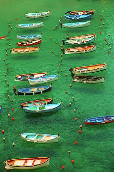 Fishing Boats in Vernazza, italy by David Smith