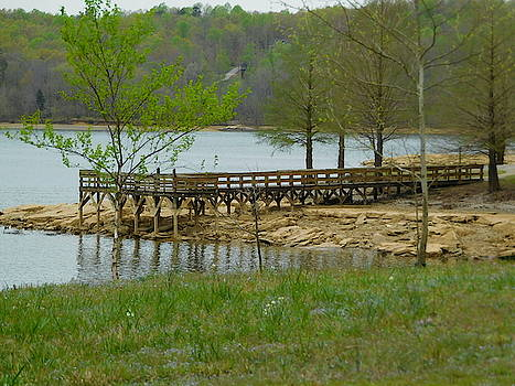 Fishing Pier by Stacey Wells