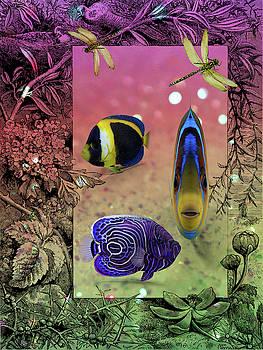 Fishy 637 by Ericamaxine Price
