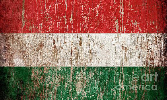 Flag of Hungary by Jelena Jovanovic