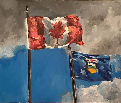 Flags by Norman Burnham