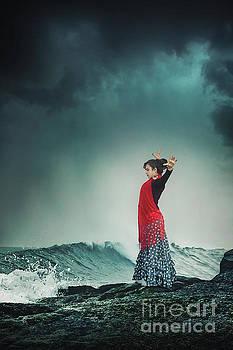 Flamenco Infusion by Evelina Kremsdorf