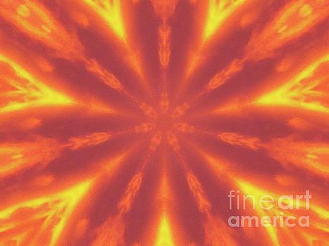 Flaming Flower by Angela Stafford