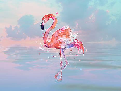 Flamingo Wading by Sandi OReilly