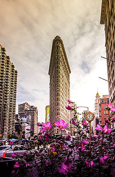 Flatiron and Flowers by Nicklas Gustafsson