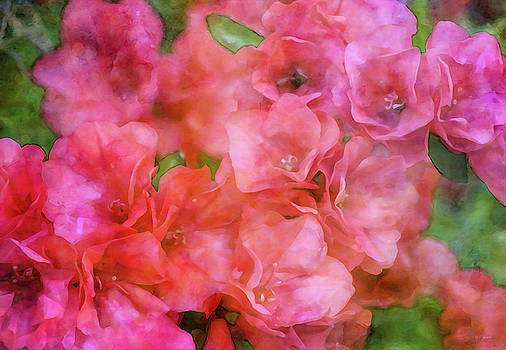 Fleeting Permanence of Color 6507 IDP_2 by Steven Ward