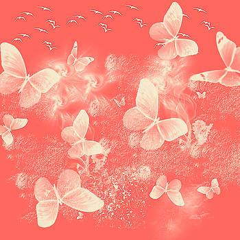 Jenny Rainbow - Flight of Butterflies