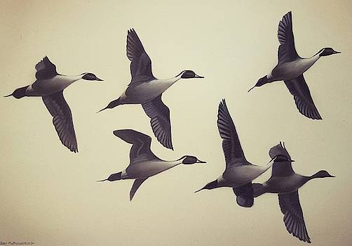 Flight by Peter Mathios