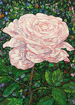 Floral Interpretation - White Rose by James W Johnson