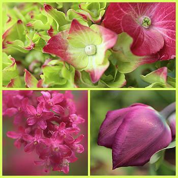 Flora's Springtime Splendour by Connie Handscomb