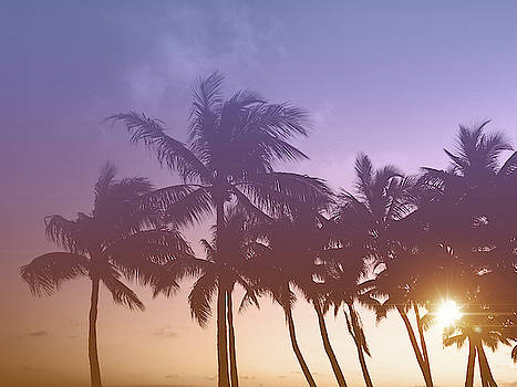Kristian Gallagher - Florida Keys Sunset
