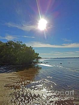 Sharon Williams Eng - Florida Sun Coast 300