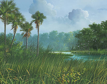 Florida's Back Country by Mike Brown
