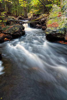 Flow by Russell Pugh