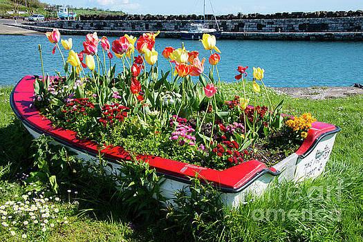 Bob Phillips - Flower Boat