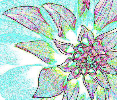 Flower exp 2 by Bruce Iorio
