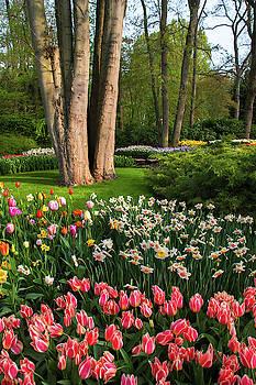 Jenny Rainbow - Flower Power Keukenhof 2019. Floral Delight