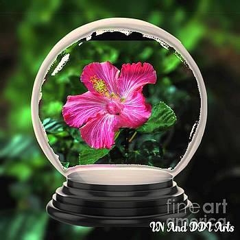 Flower Snow Globe by Debra Lynch