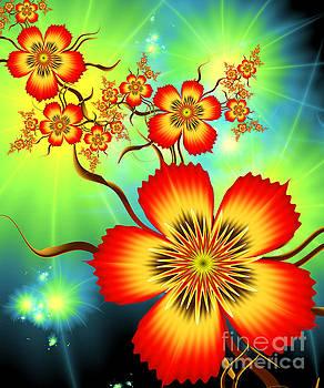 Flowers And Night Lights by Galina Lavrova
