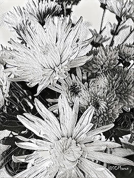Flowers in Black and White by Steven Macon