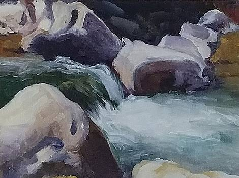 Flowing Creek over Rocks by Lilly Ramphal