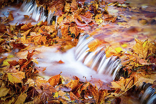 Flowing Fall by Greg Booher