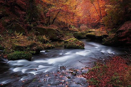 Flowing by Marek Ondracek