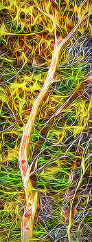 Flowing Trees - Abstract by Joel Bruce Wallach
