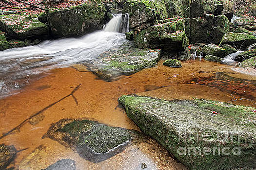 Flowing water through boulders on a forest creek by Michal Boubin