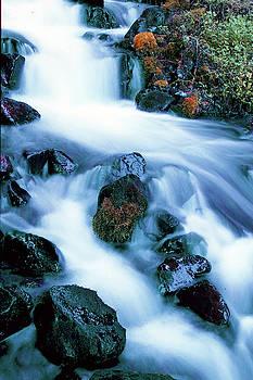 Susan Burger - Flowing Waters