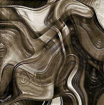 Fluid Brush Strokes -monochromatic  by Grace Iradian
