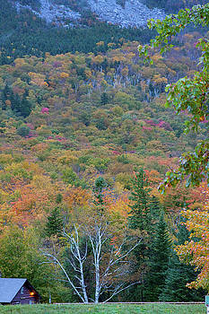 Flume Gorge wall of color by Jeff Folger