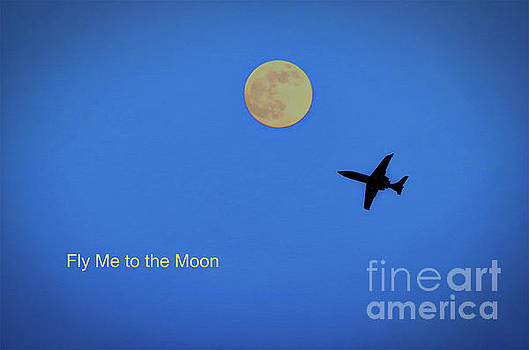 Fly Me to the Moon by Gary Richards
