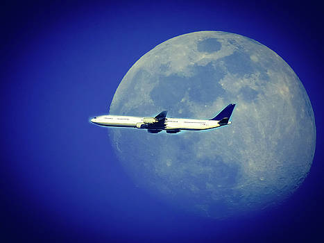 Fly Me To The Moon by Kathy Gail