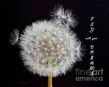 Fly With Your Dreams by Debby Pueschel