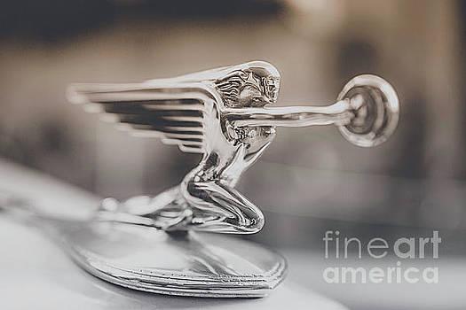Flying Goddess by Nancy Forehand