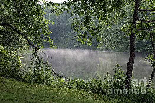 Fog on the lake by Diane Friend