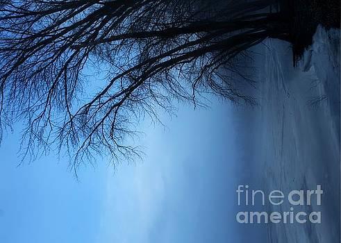 Foggy Blue I by Denise Irving